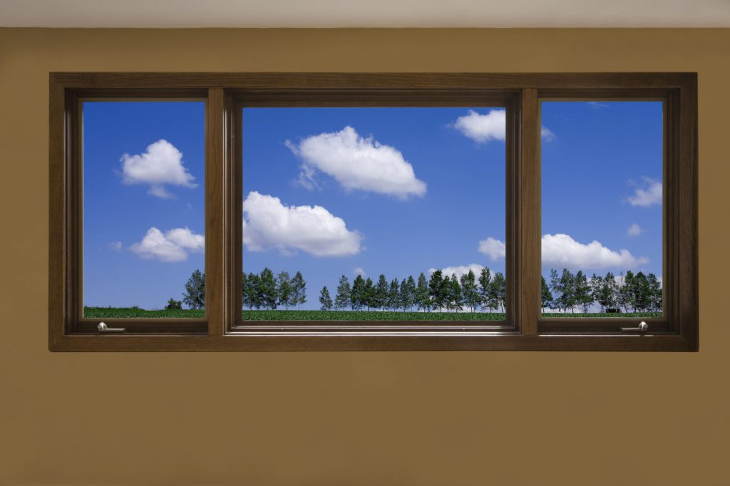 A tinted window showing sky and trees to illustrate The Science Behind Window Tinting